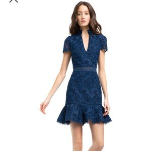 AO 2019 fall butterfly lace dress NWT